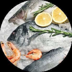 pescados Mayoristas pescados y Mariscos Sevilla