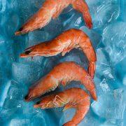 Venta de pescado y marisco al por mayor en Sevilla